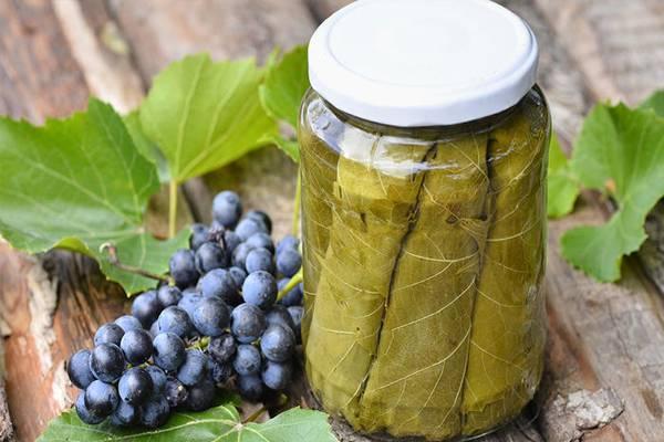 marinovannye listya vinograda