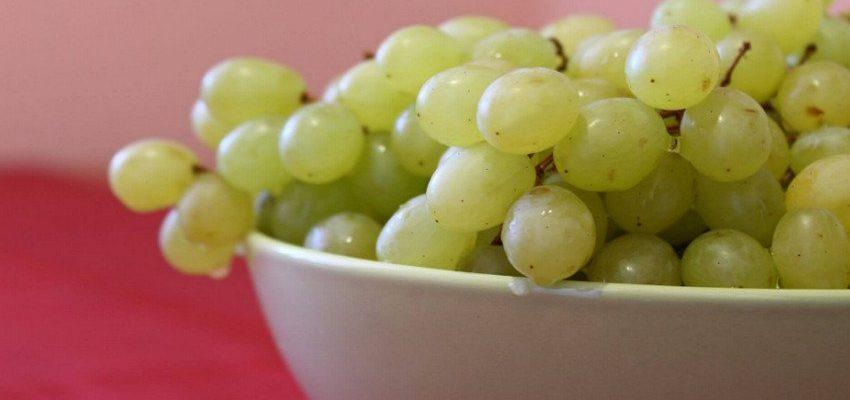 mozhno li est vinograd pri diabete osobennosti upotrebleniya