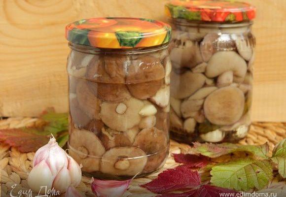 solenye maslyata samye vkusnye recepty na zimu