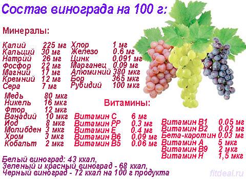 v chem polza vinograda