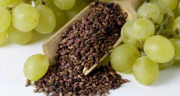 vred i polza kostochek vinograda