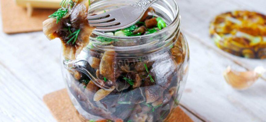 zasolka opyat na zimu luchshie recepty na ljuboj vkus